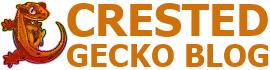 Crested Gecko Blog